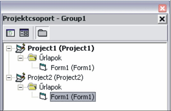Projekt csoport