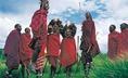 Szarvasmarhatenyésztő maszájok (Kenya)
