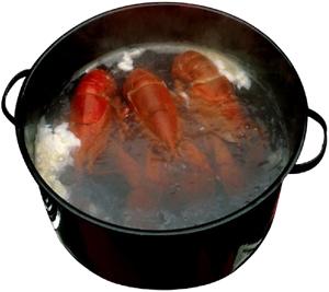 Az ételek főzése megkönnyíti a tápanyagok emésztését