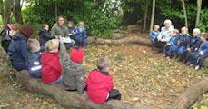 Matek az erdei iskolában