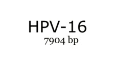 Védekezz a HPV ellen!