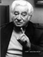 Jorge Amado brazil író
