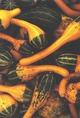Tökfélék az őszi betakarítás után Új-Angliában