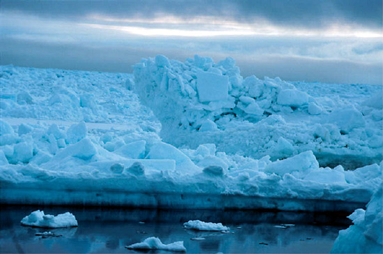 A sarkvidék