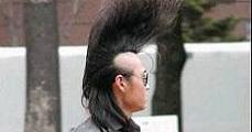 A haj