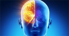 A diszlexia tünetei