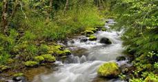 Felszínalakító folyók