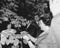 Indira Gandhi, India miniszterelnöke Balatonfüreden