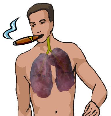 A dohányzás káros a tüdőre