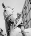 """""""A Csutak és a szürke ló"""" c. film forgatása"""