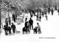 Pillanatképek a havas Dobogókőről