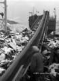 Lengyel-magyar közös vállalkozás, ahol a munkások szállítószalagon továbbítják a meddőhányóból kitermelt anyagot a feldolgozó üzembe