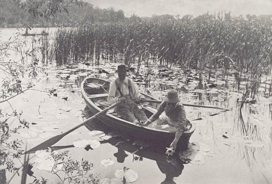 Emerson felvételén épp tavirózsát szed egy házaspár, csónakból