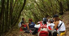 A környezeti nevelésről