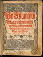 Sylvester János: Új Testamentum
