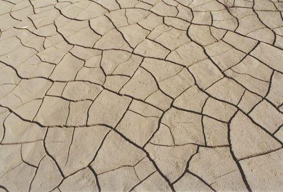 Kiszáradt talaj