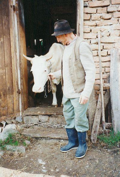 Tavasszal a küszöbre tett láncon keresztül vezetik ki az istállóból a tehenet, mert a néphit szerint így nem széled szét a csorda