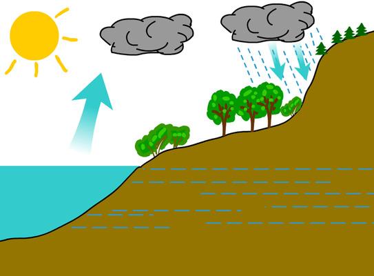 A víz körforgása
