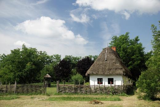 magyar_taj_520