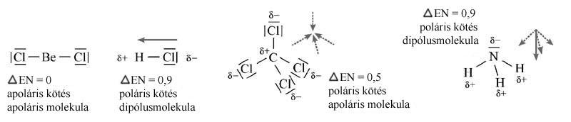 Poláris molekula