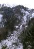 Fenyőfa egy havas, sziklás hegyoldalon