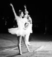 A szovjet művész- és sportküldöttség tagjainak szereplése