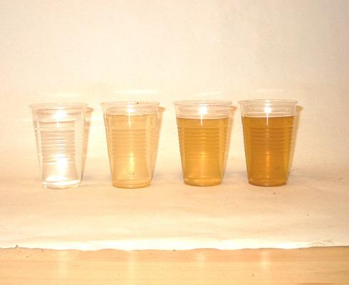 Rajzlap segíthet a víz tisztaságának megállapításánál