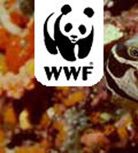 A WWF címere