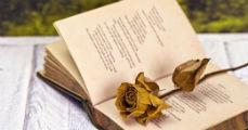 Miért van szükség a költészetre?