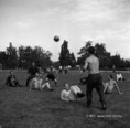 Ökölvívók felkészítése a tatai edzőtáborban