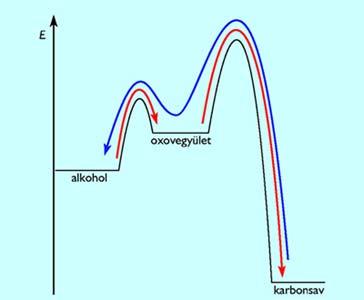 Az oxigéntartalmú szerves vegyületek átalakulásának energiaviszonyai