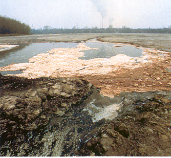 Erősen szennyezett vízpart