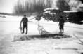 Téli halászat a Dunán