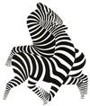 Victor Vasarely: Zebrák