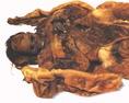 A fókabőrbe tekert 25 év körüli asszony, valószínűleg a csecsemő édesanyja