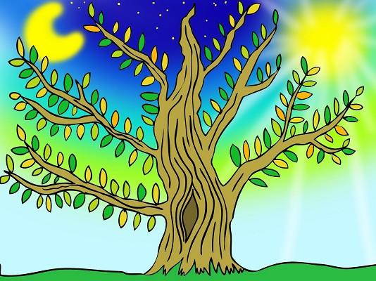 Mit tesznek értünk a fák?