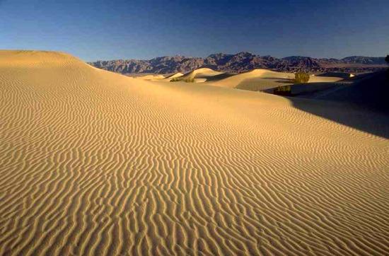 Sivatag hőmérséklet