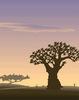 Majomkenyérfa Afrikában