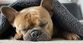 Aludj egy jót! – Tippek a pihentető alváshoz