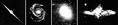 Galaxisfajták