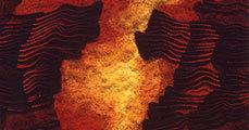 Kubinyi Anna, a plasztikus kárpit művésze