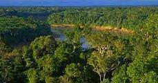 Nemzeti park Amazóniában