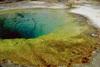 Hő- és savtűrő baktériumok élőhelye
