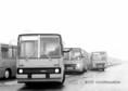 Autóbuszok a Szovjetunióba