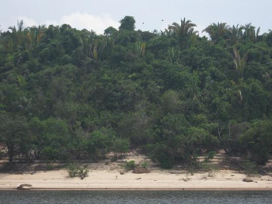 Amazonas-medence: Solimões-folyó vízvidéke