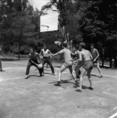 Olimpiai edzőtábor Tatán