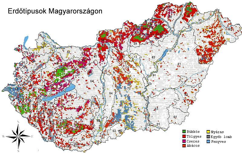 magyarország akácerdői térkép Ember a természetben   4. osztály | SuliTudásbázis magyarország akácerdői térkép