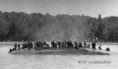 Elsüllyedt a Pajtás nevű csavargőzös hajó a Balatonon