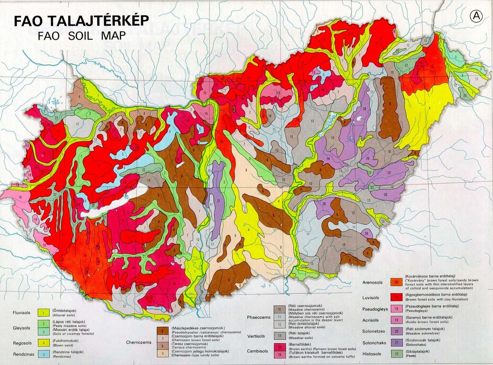 talajminőség térkép magyarország Ember a természetben   5. osztály | SuliTudásbázis talajminőség térkép magyarország
