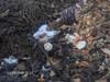 Konyhai hulladék